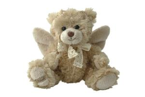 Teddy bear - Support the Special Children Travel fund